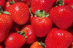 * Fresh Strawberries 1KG Boxes £3.00 @ Tesco *