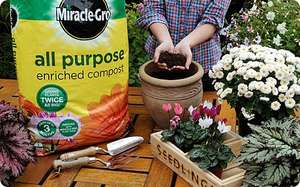 Free bag of compost from Homebase with Sunday Telegraph (2/8) - paper is £2.00