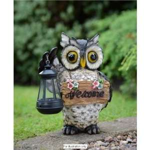 Light up owl with Solar Light & Hooting Noise that welcomes people to your door (Or scares people away) £4.99 @ B&M