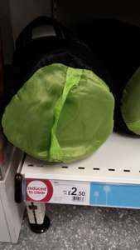 Sleeping bags - Mummy Sleeping Bag £2.50 Envelope Sleeping Bag £3, Insultated Roll Mats £1 Instore @ Wilko