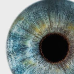 FREE EYE TESTS FOR EVERYONE  AT VISION EXPRESS