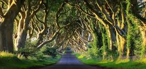 Winter is Coming! 9 hour Game of Thrones Tour + Belfast Stay + Breakfast from £59.50pp (Based on Two) @ Travelbird