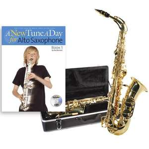 Windsor Alto Saxophone £114.99 Free Delivery toysrus.co.uk