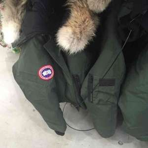 Canada Goose Ladies Bomber Jacket £335.98 @ Costco