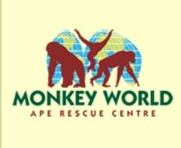 Free Entry on31st October  2015 for All Children in Full Halloween Fancy Dress at Monkey World
