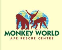 Free Entry on31st October  2015 for All Children in Full Halloween Fancy Dress at Monkey World