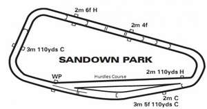 RACING - 20% off tingle creek days at sandown park in december