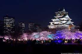 Business class return flights, London to Osaka  £841 return december/ january @ travelpack.com