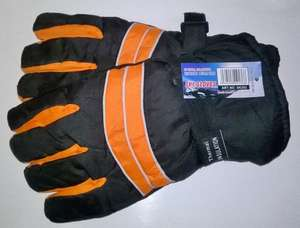 Royal Collection Thermal Fleece Lined Ski Gloves 99p @ 99p Stores