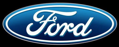 Ford Winter Service Check - £9.99