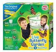 Insect lore butterfly garden £4.99 delivered at Argos