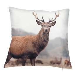 Half price cushions £3.99 JYSK