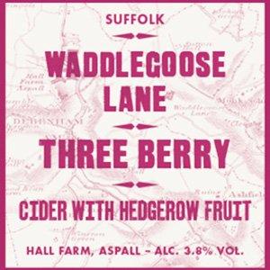 Waddlegoose Lane Three berry cider (Aspall) 49p at home bargains