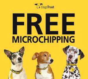 Free microchipping of your Dog