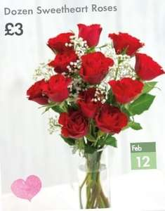 A Dozen Red Roses or Tulips £3 - LIDL- Single Red Rose £2 - Mini Roses in Gift Bag £3.99 - Plus SIX more offers (See description) -11th February