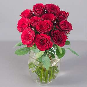 12 Red Roses @Debenhams £16.44 includes free delivery -  Quidco 17.5%