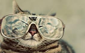 Free eye test @ Tesco opticians