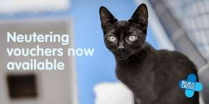 blue cross dog/cat neutering help with a £25 voucher