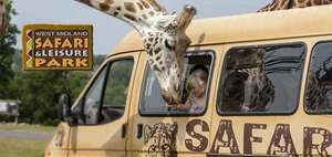 1 night stay + breakfast + late check-out + West Midlands Safari Park tickets from £89 at Travelbird