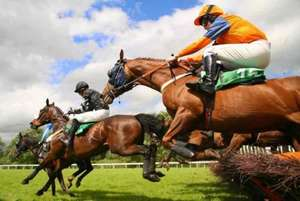 Crabbies Grand National tickets £26 each @ Viagogo + £4.78 booking and admin fee