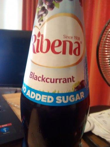 850ml Ribena no added sugar  @ home bargains 49p