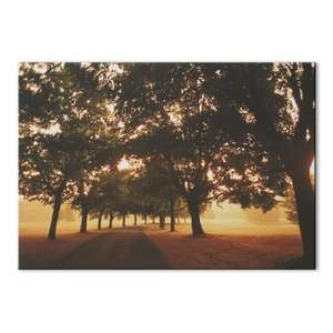 Morning Walk 100cm x 70cm Photographic Canvas was £39.50 now £10 del @ Graham & Brown (upto 70% off Sale + FREE Delivery Today Only )