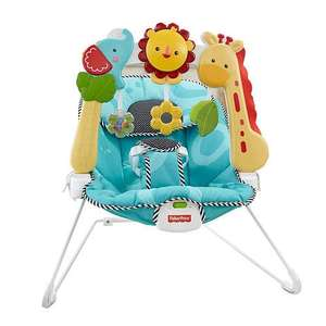 Fisher price sensory bouncer. £29.99 Argos