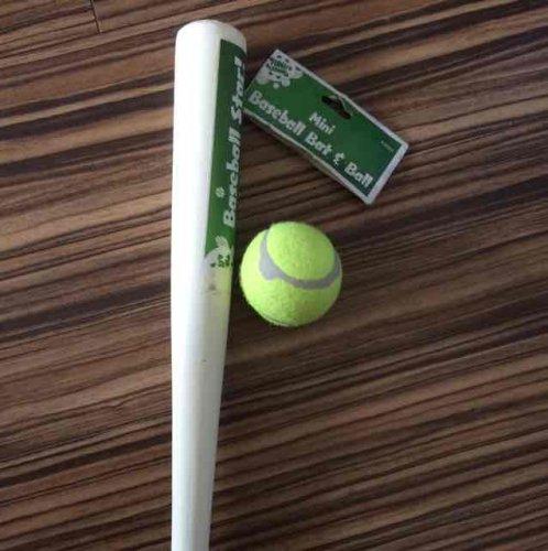 Mini baseball bat and ball £1 @ poundworld