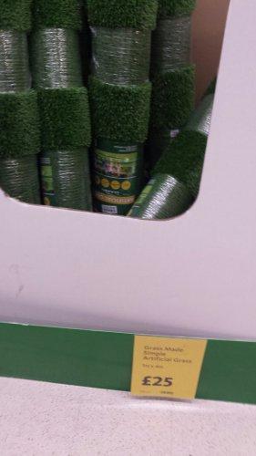 Artificial Grass at Morrisons £25 1m x 4m