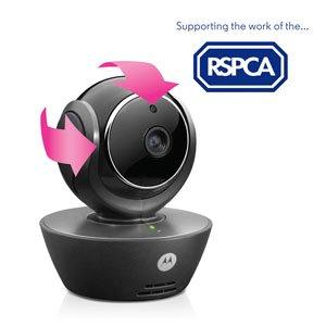 Motorola Scout 85 WI-FI HD PET MONITOR £42.99 @ ARGOS