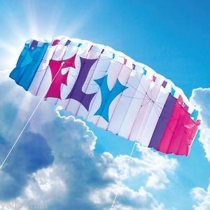BROOKITE SKY FLY 2.0M ENTRY LEVEL POWER STUNT KITE PACKAGE FOR KIDS/ADULT £19.99 Ebay / yellowfinn