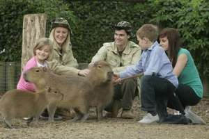 VIP Chessington Animal Feeding Encounter, Theme Park & Zoo Entry for 2 Only £69 Less than half price @ Wowcher