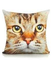 Cat Cushion was £7 now £3.50 C+C @ Asda George (also Pink Bunny Cushion & other soft furnishings half price)