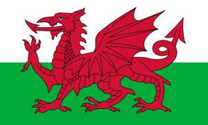 [All the way] Wales Flag £1.84 Delivered @ Wish List For You  via Amazon