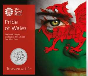 Royal Mint Wales £20 commerative silver coin with FREE DELIVERY (one week only)