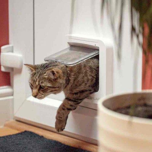 sureflap cat flap £48.99 instore @ Costco