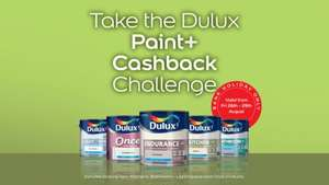 free paint dulux this weekend - Paint Challenge!
