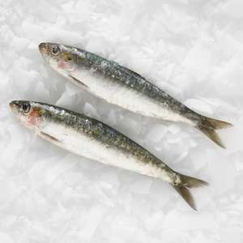 Tesco fish counter Cornish fresh sardines £2.25 a kilo now