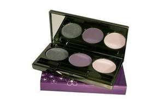 Jane Fardon Cosmetics closing down sale - Everything reduced e.g. eye shadow set £5 (Was £19)