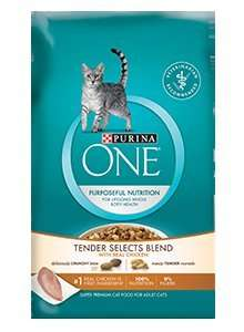 Free Sample of Purina One Cat Food.