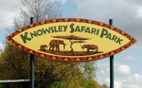 Knowsley Safari Park - £15 per car starting 11-11-16
