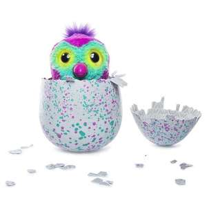 Hatchimals Pengualas Teal Egg £59.99  in stock for delivery toys r us
