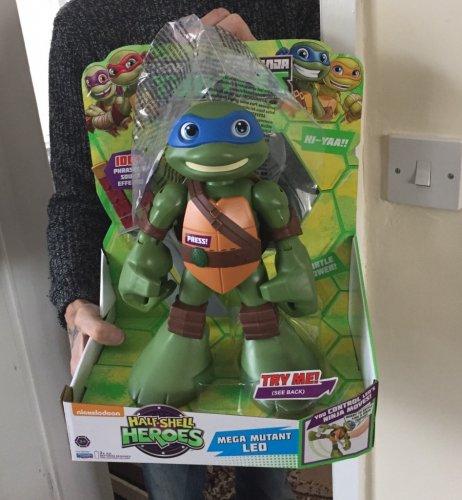 Teenage turtles half shell helps mega mutant Leo at Tesco for £12.54