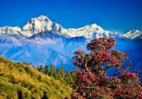 Manchester (UK) to Kathmandu (Nepal) via Qatar Airway £348.14 @ Momondo