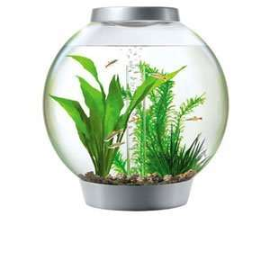 Baby Biorb 15L fish tank £55 @ Pets at Home