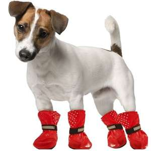 dog wellies :) instore at B&M for £3.99