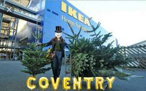 Real Christmas Trees on Sale instore with £20 Gift Voucher IKEA Coventry branch