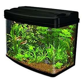 Interpet Fish Pod Glass Aquarium Fish Tank - 64 L £74.99 from Amazon