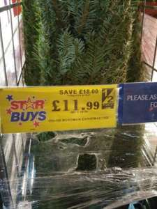 Christmas trees instore £11.99 @ Home Bargains