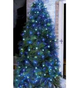 Blue LED Christmas tree  light various lengths  from £5.99  @ Studio (£4.99 del)